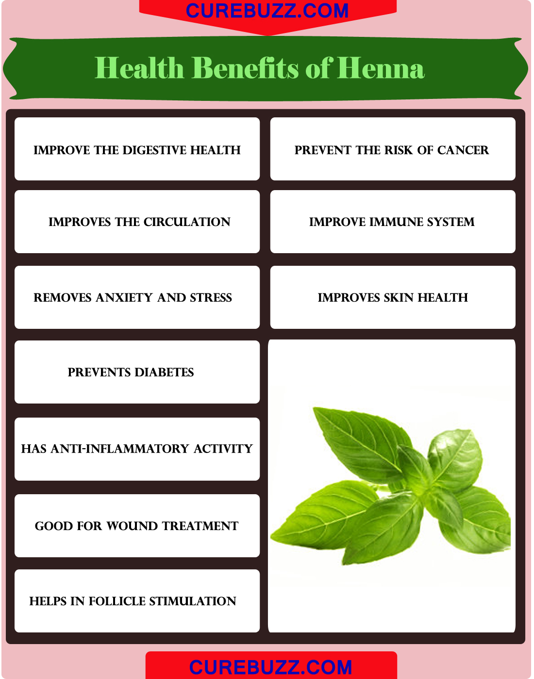 Health Benefits of Henna