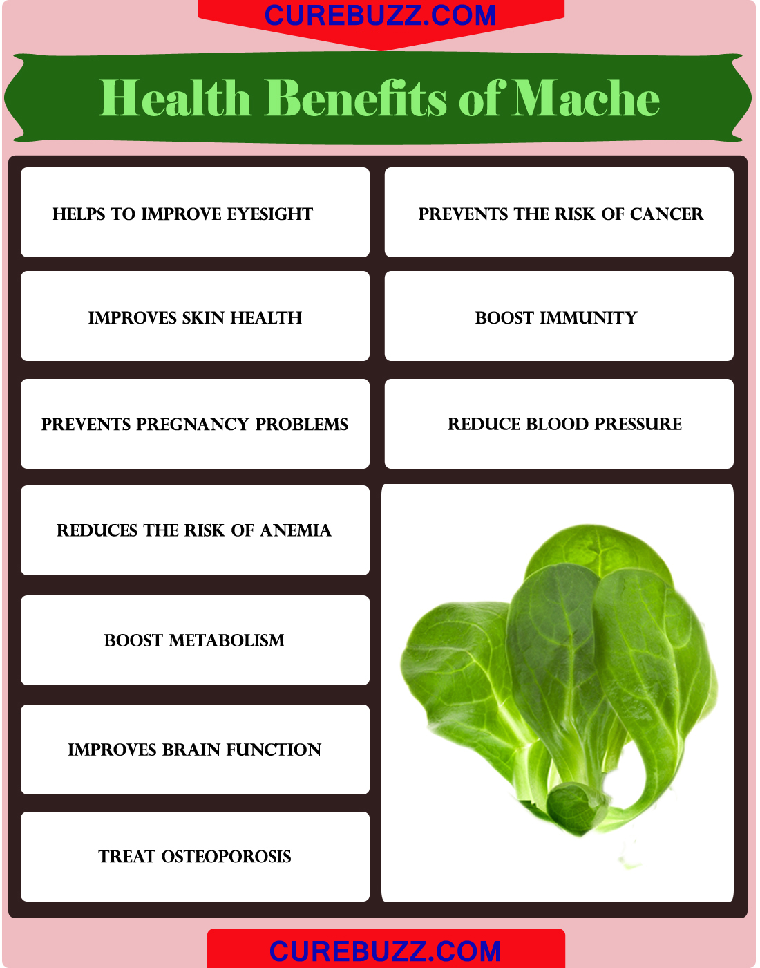 Health Benefits of Mache