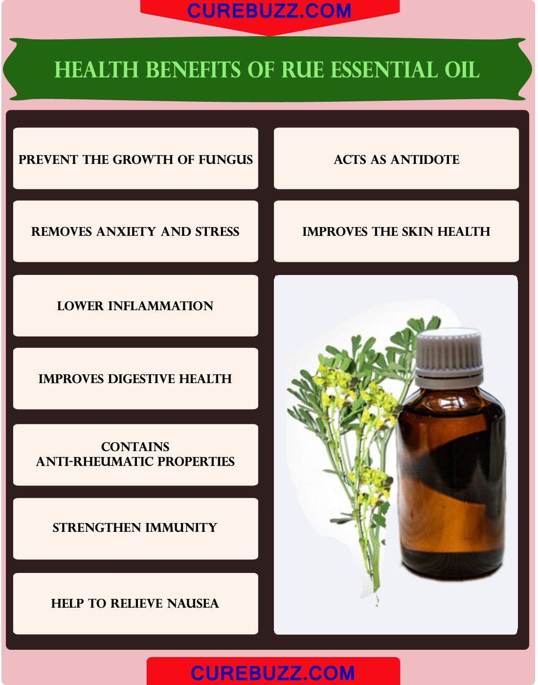 Health Benefits of Rue Essential Oil
