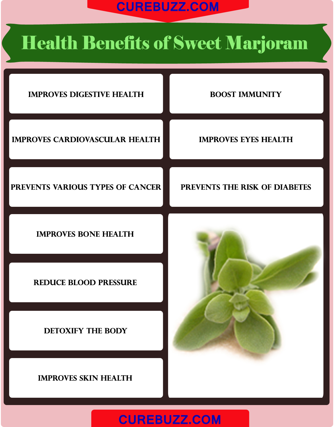 Health Benefits of Sweet Marjoram