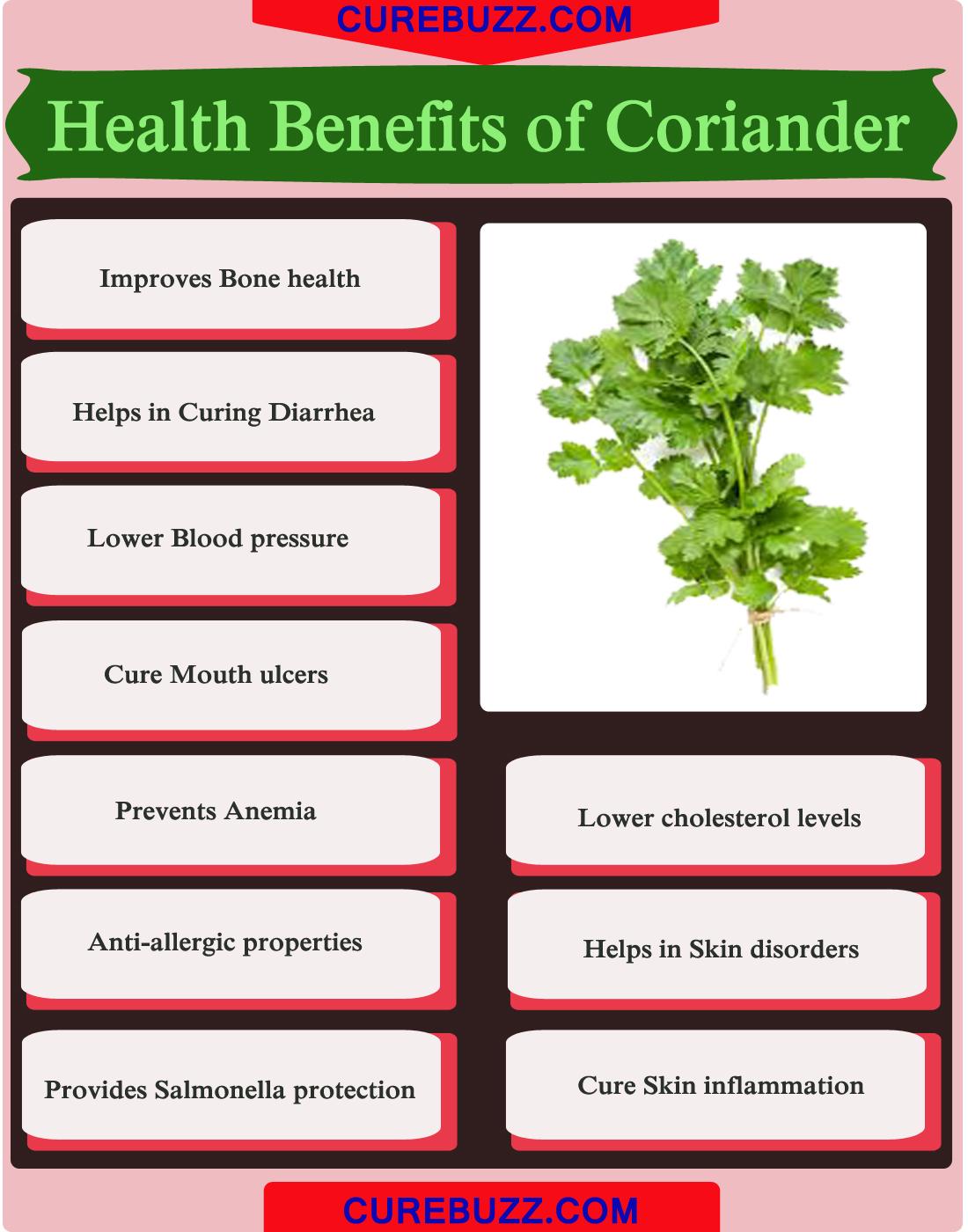 10 health benefits of coriander : getatoz