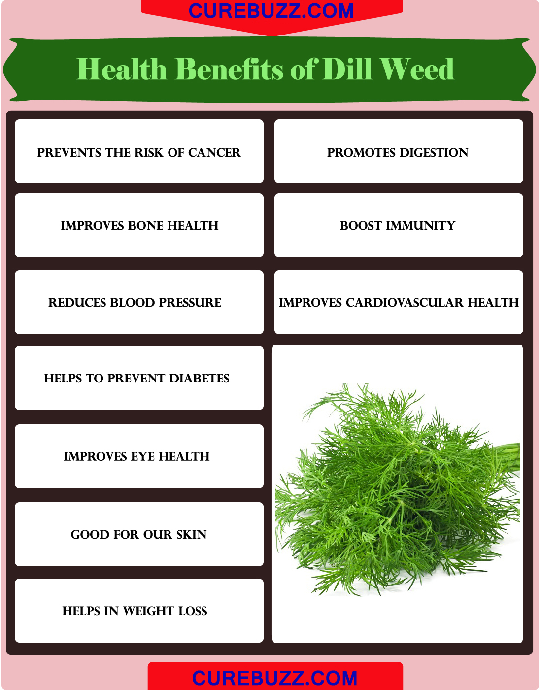 Health Benefits of Dill weed