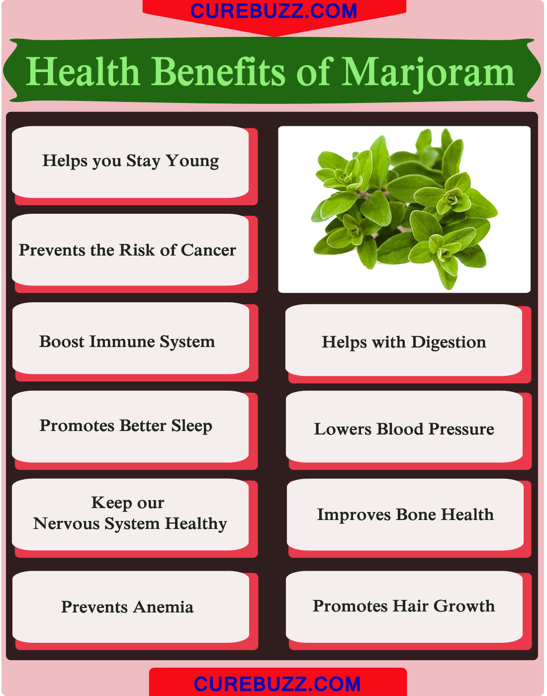 Health Benefits of Marjoram