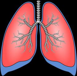 Pneumonia: Symptoms and Diagnosis