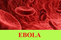 Ebola hemorrhagic fever or Ebola virus disease: Sign and Symptoms, Causes, Transmission, Risk factors, Contagious period, Diagnosis, Treatment, Complications, Prevention, Vaccine and Information center