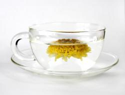 8 Health Benefits of Chrysanthemum Tea