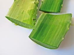 30 Health Benefits of Aloe Vera