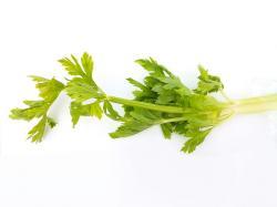 9 Health Benefits of Celery
