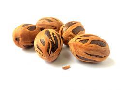 8 Health Benefits of Nutmeg
