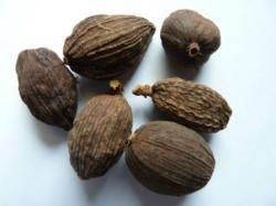 12 Health Benefits of Black Cardamom