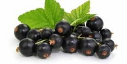 10 Health Benefits Of Maqui Berry Getatoz