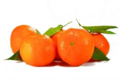 10 Health Benefits of Tangerine