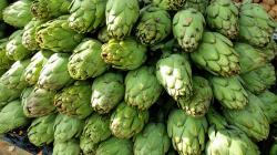 10 Health Benefits of Artichokes