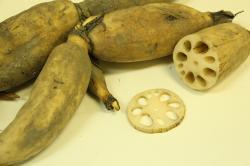 10 Health Benefits of Lotus Root