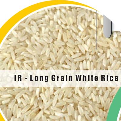 IR Long Grain White Rice